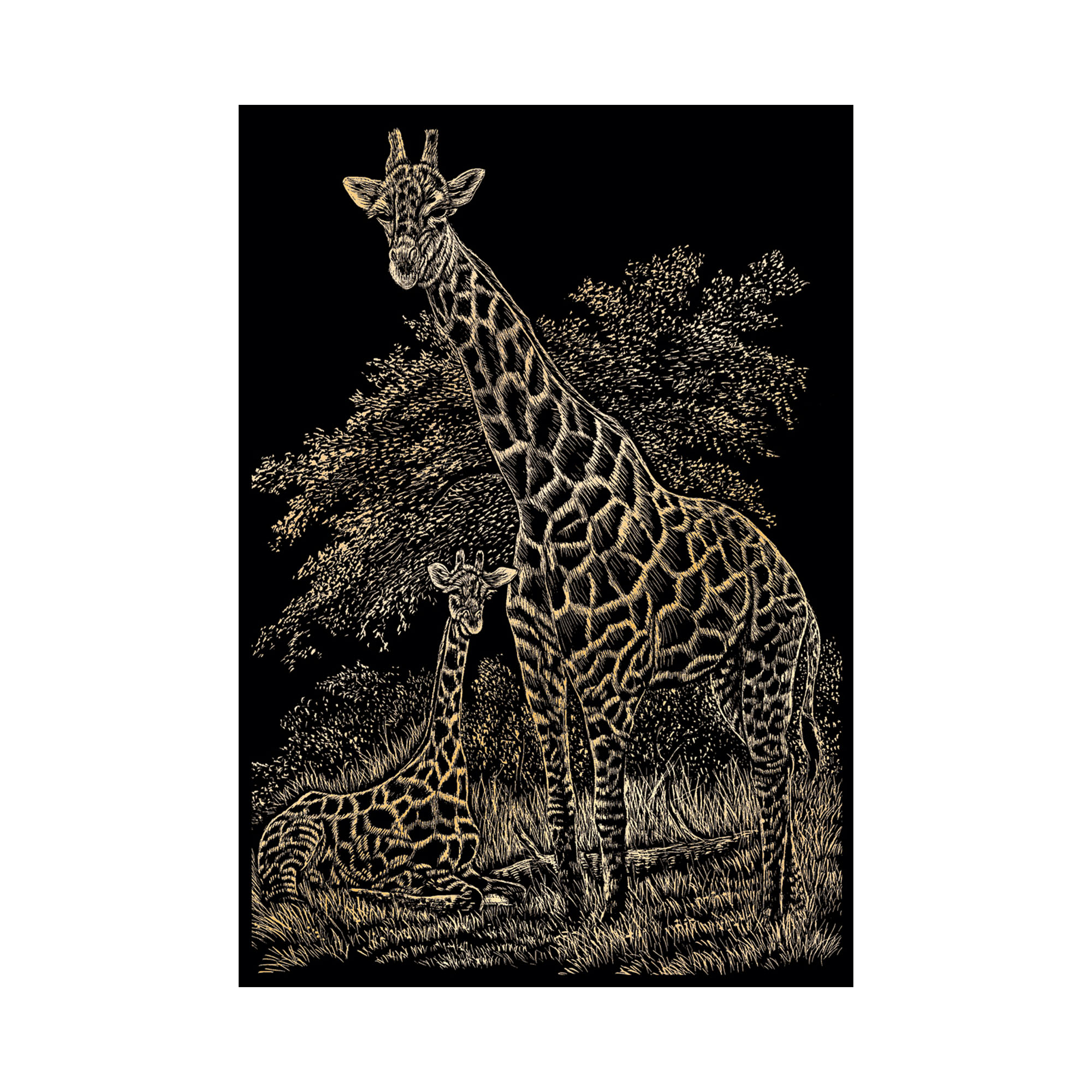 Safari engraving kit, set of 3