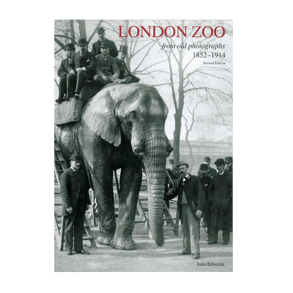 London Zoo From Old Photographs