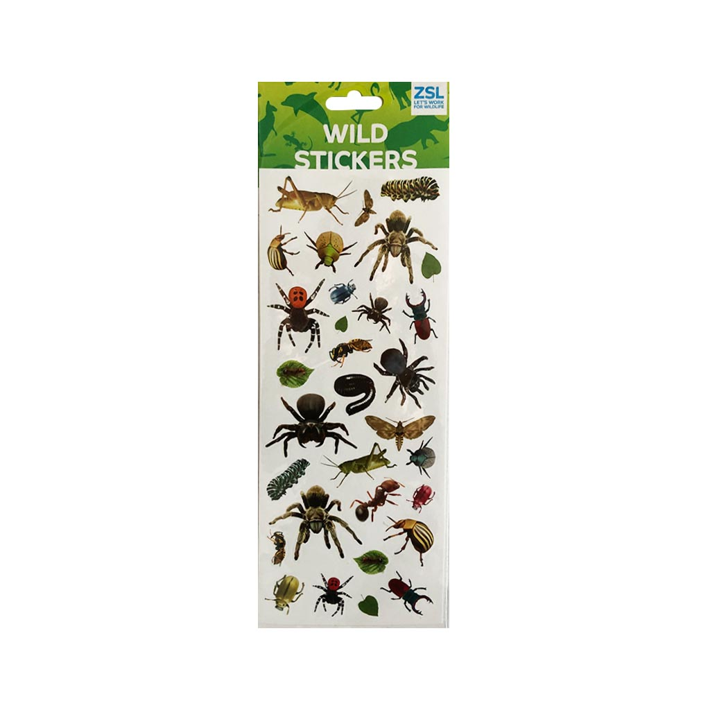Spiders and Bugs Stickers