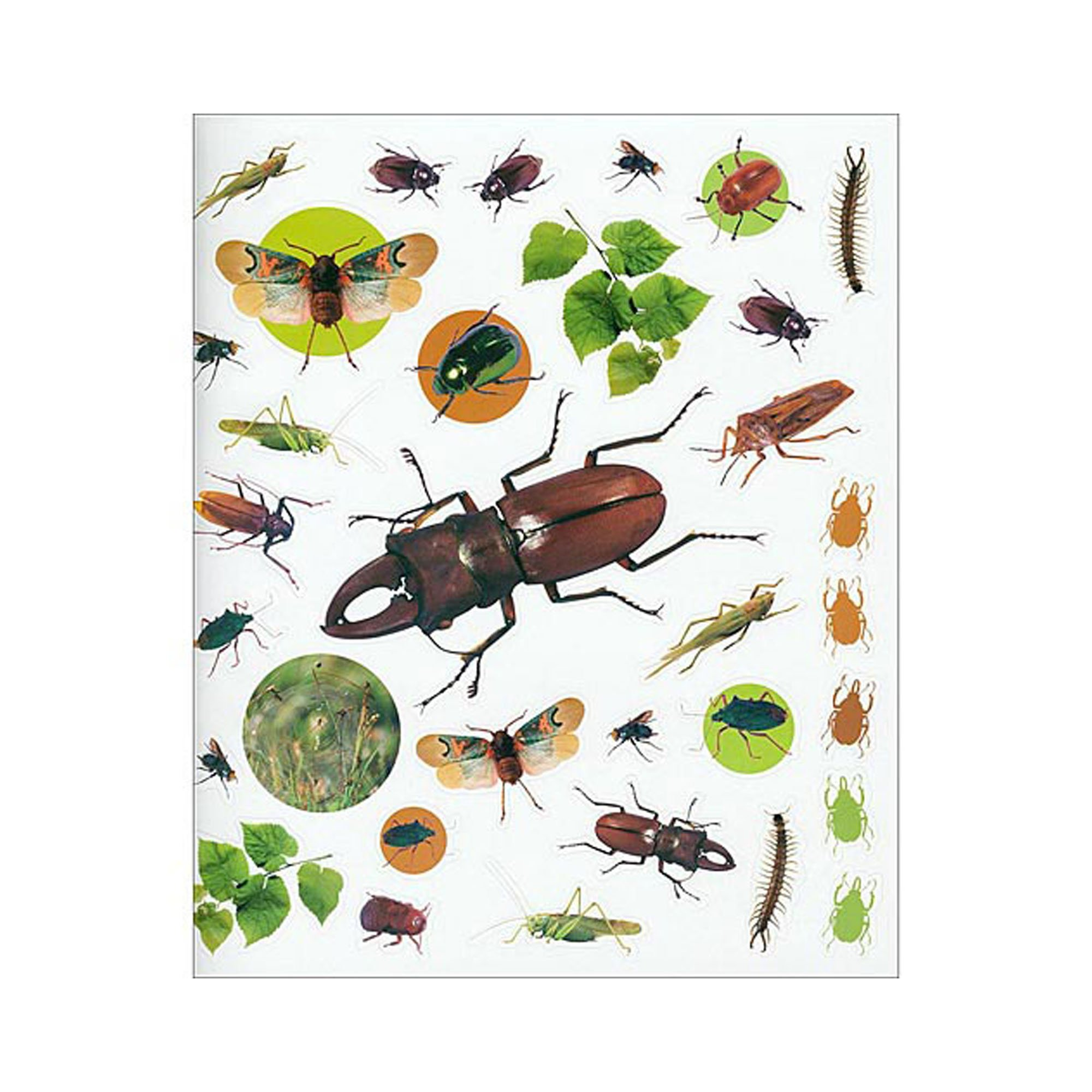 Bugs sticker book