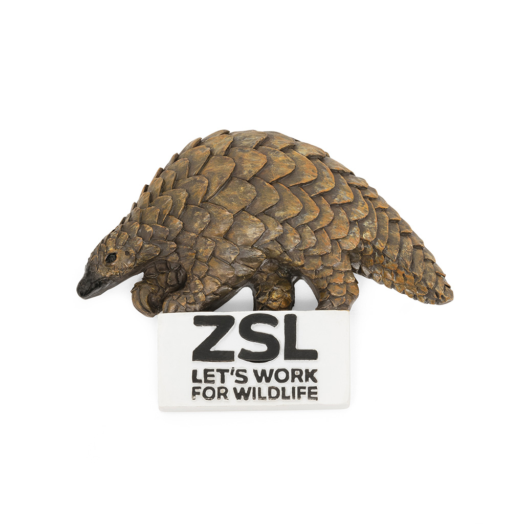 Pangolin fridge magnet
