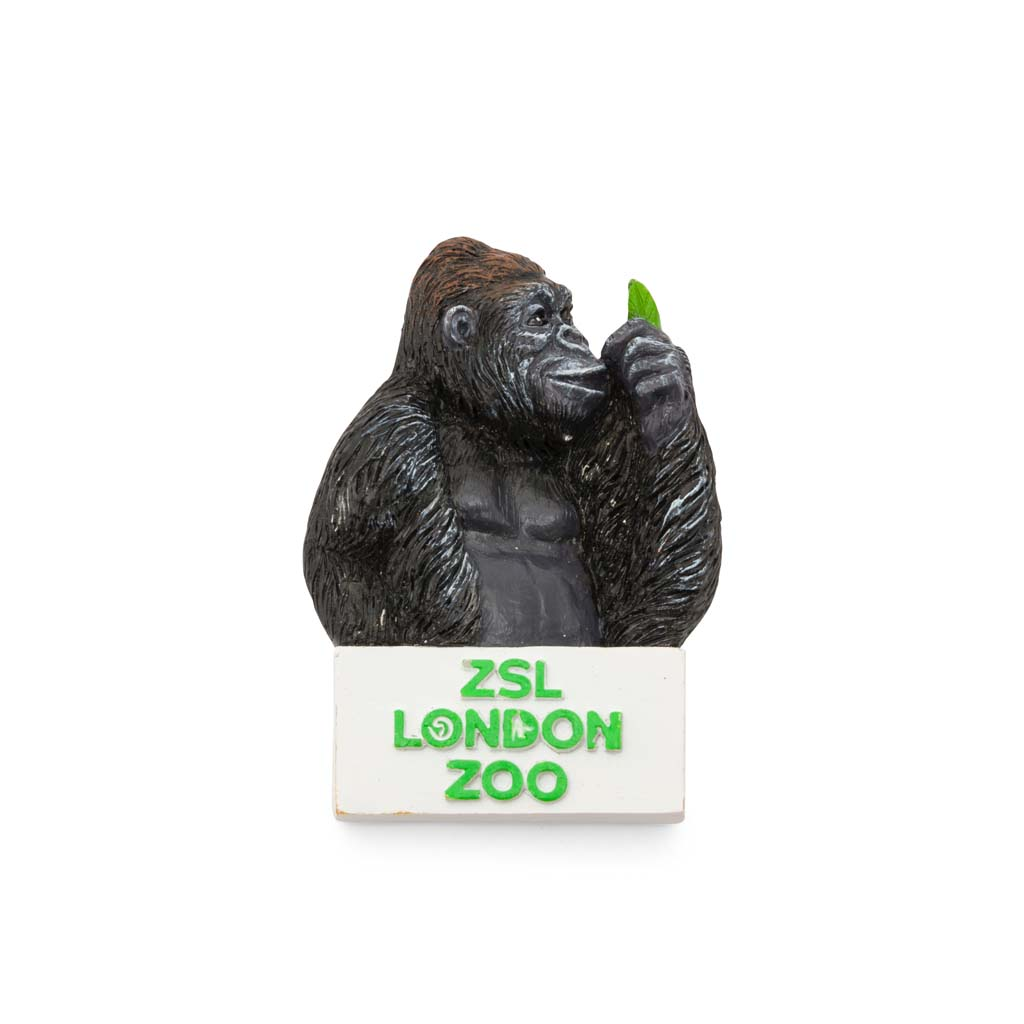 London Zoo Gorilla Magnet