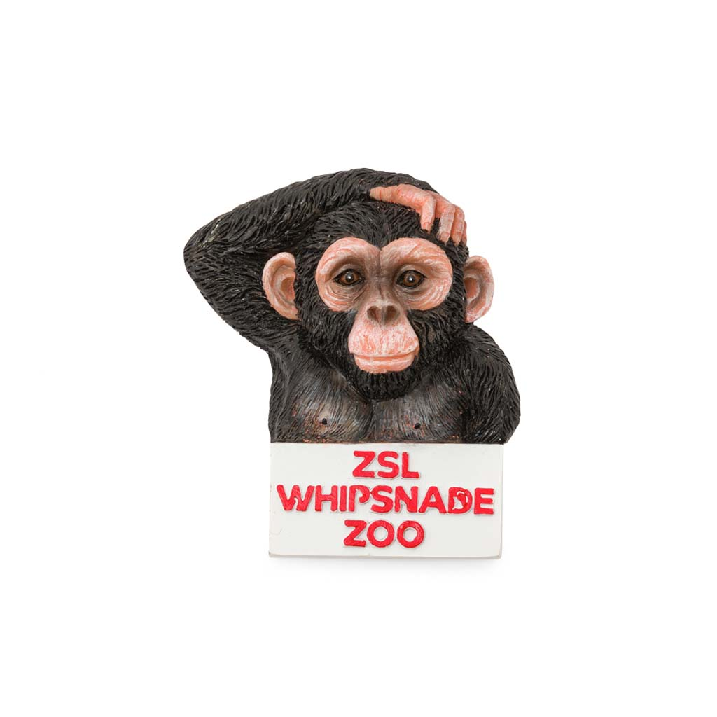 Whipsnade Zoo Chimp Magnet