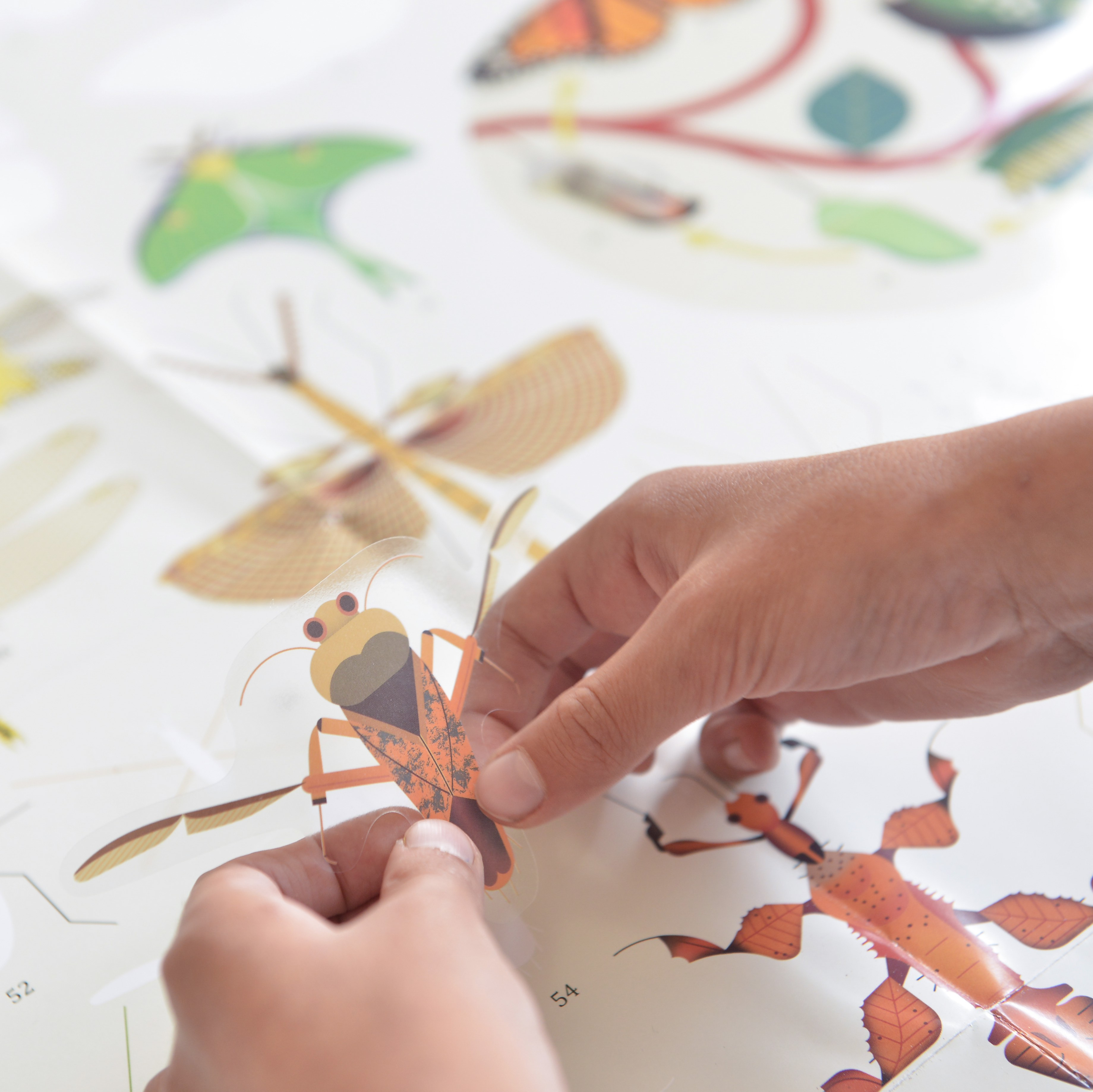 Insects Sticker Craft Set, Wall Poster lifestyle