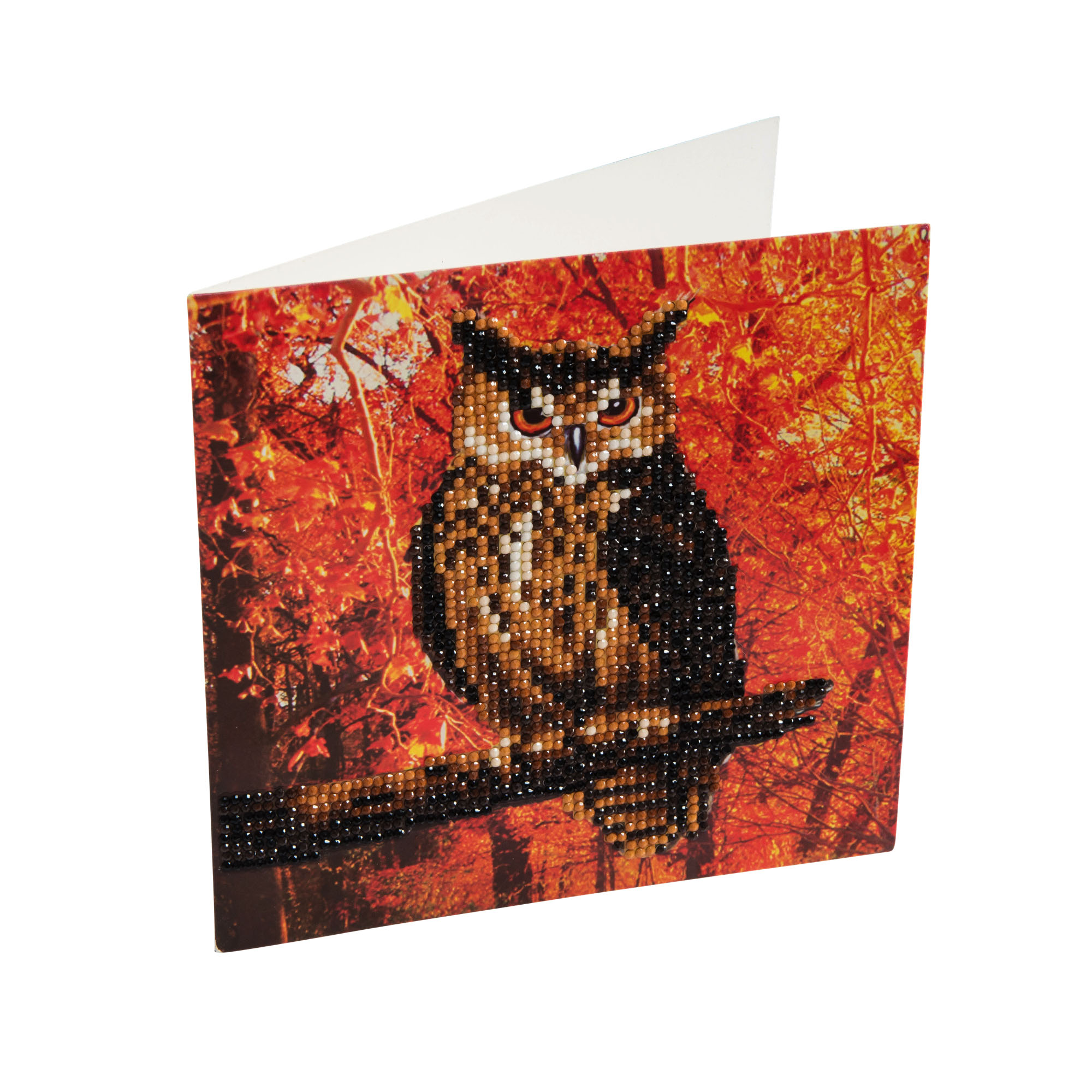 Owl Crystal Card Kit