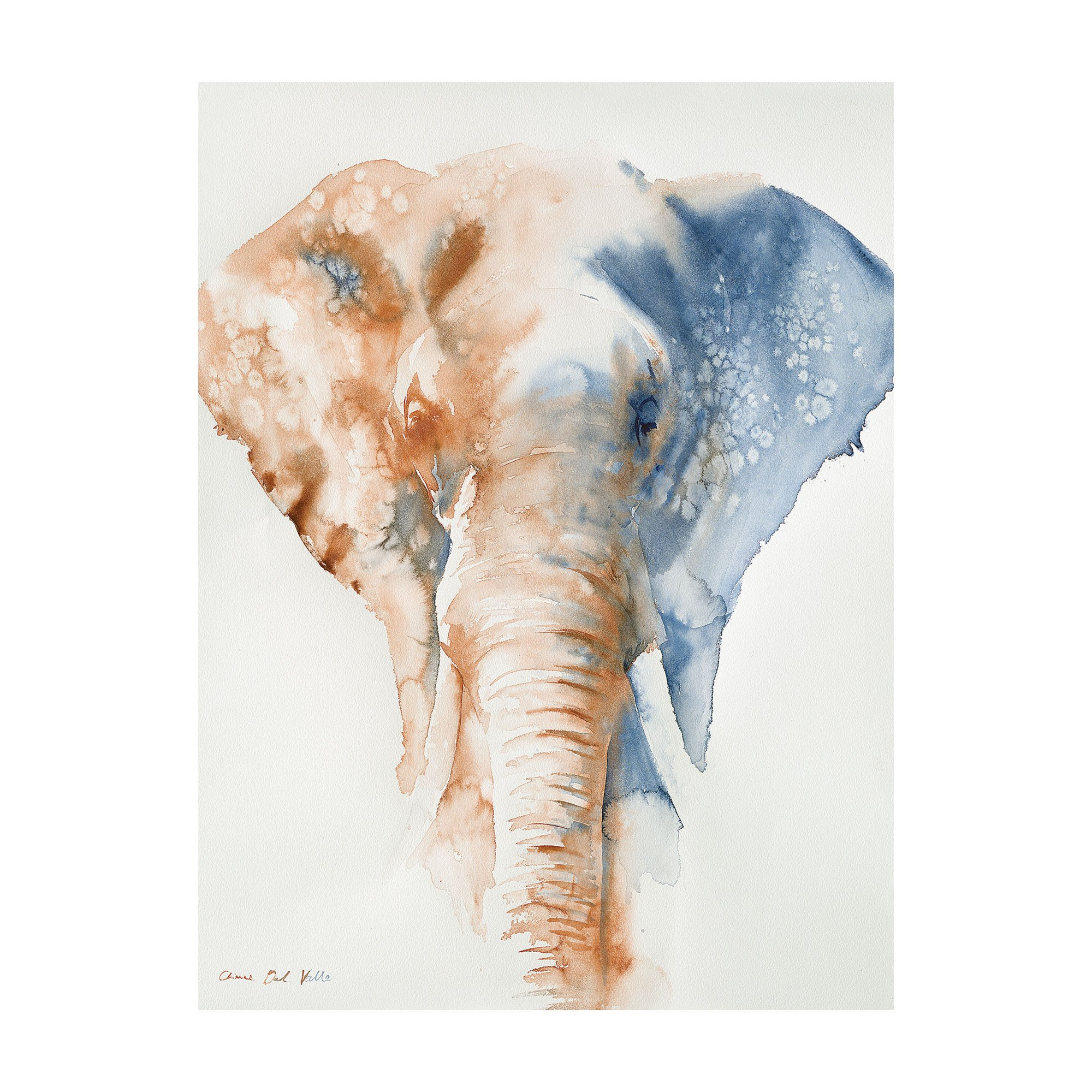 Elephant Canvas