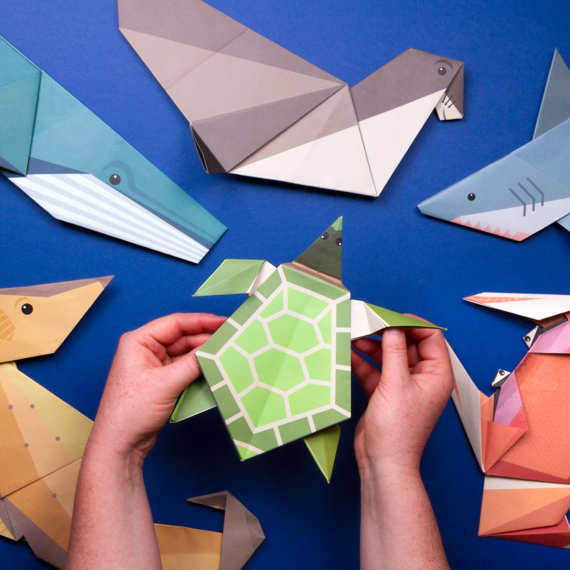 Giant Ocean Origami includes