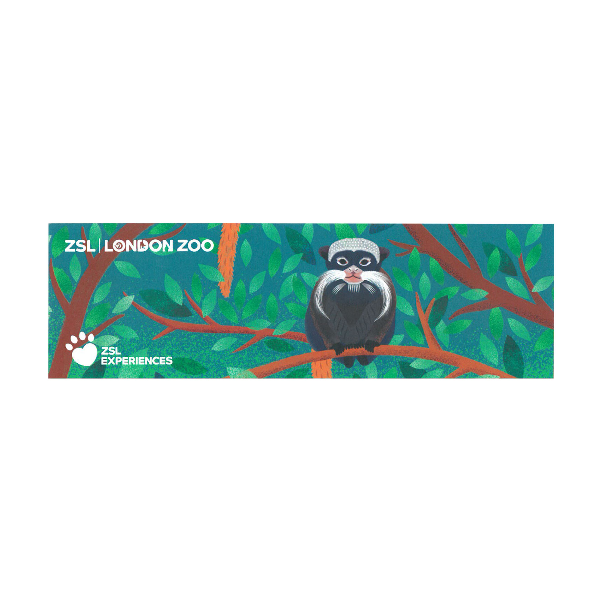Meet the Rainforest Gift Experience at ZSL London Zoo
