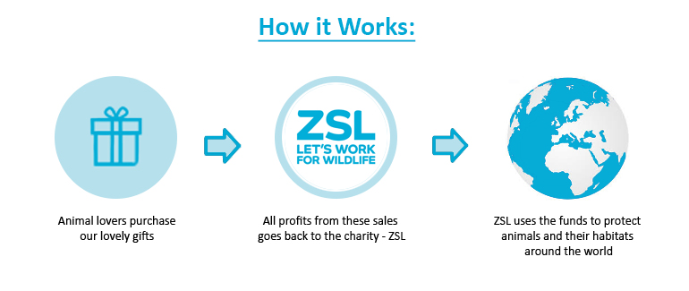 ZSL Our Mission Infographic