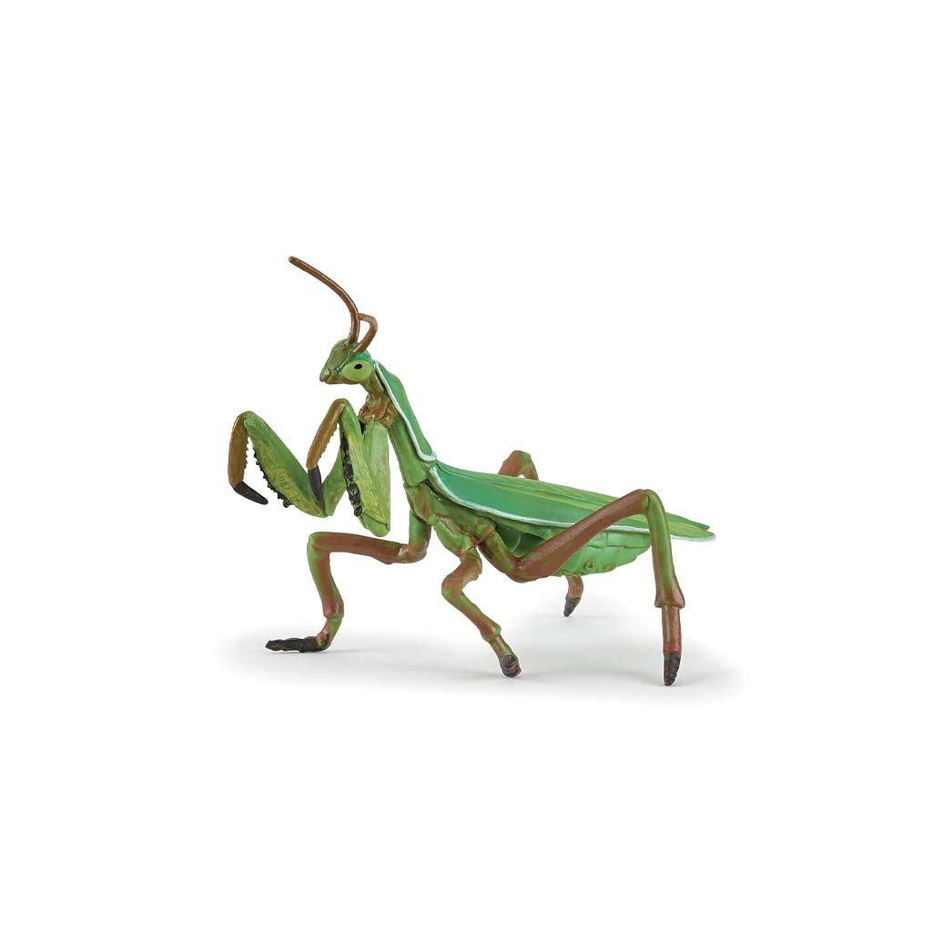 Praying mantis figure