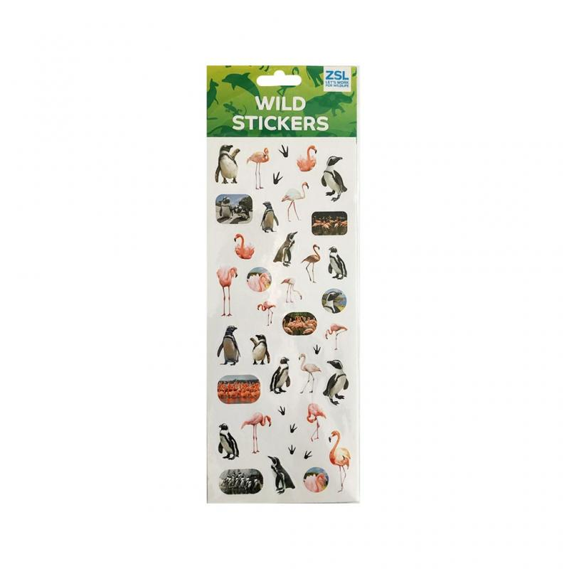Flamingos and Penguins Stickers