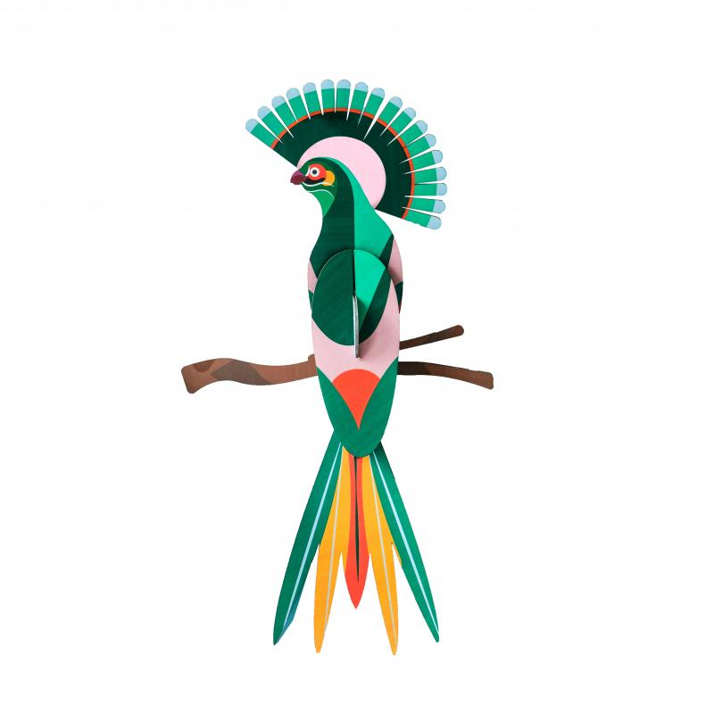 Paradise bird, gili wall art