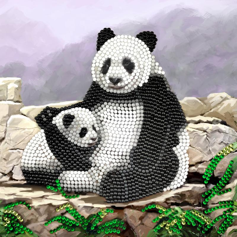 Panda crystal card kit