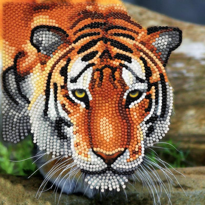 Tiger crystal card kit