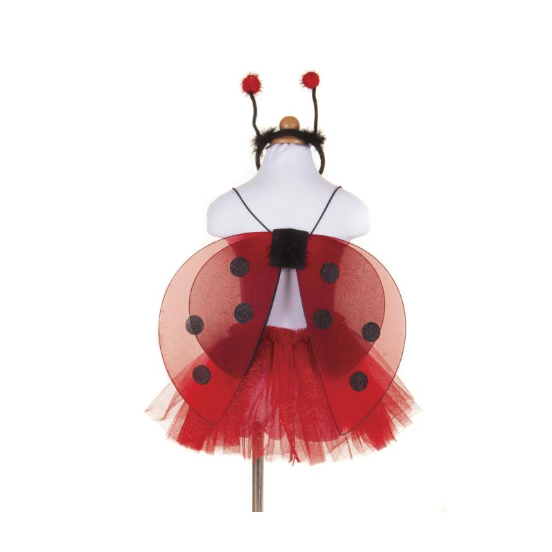 Lady bird fancy dress set