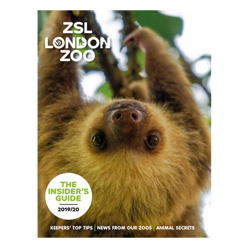 London Zoo guidebook