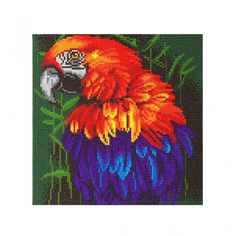 Macaw Crystal Canvas Art Kit, 30cm x 30cm