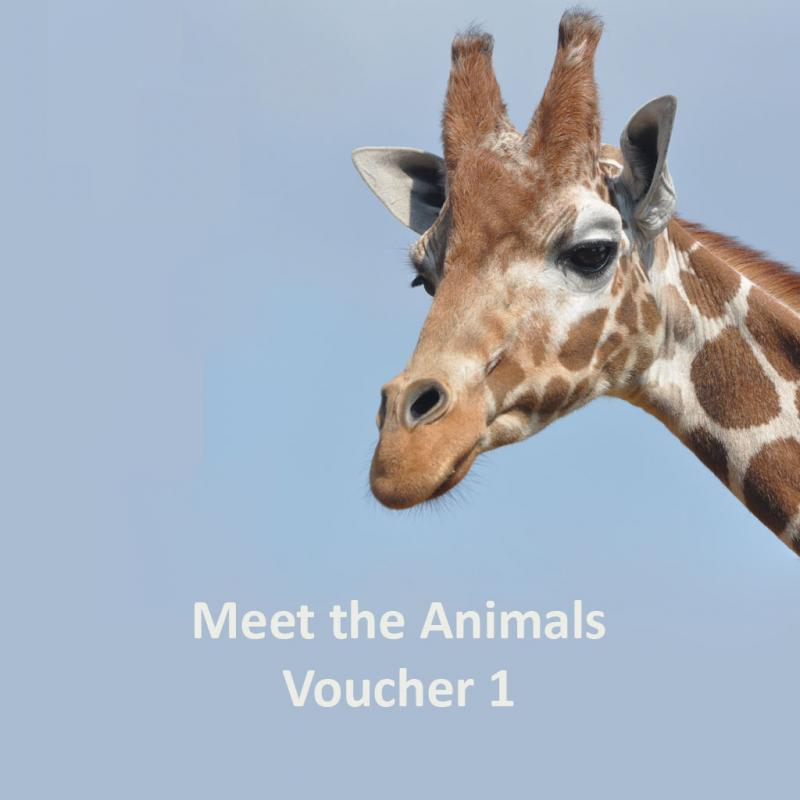 Meet the Animals gift voucher 1