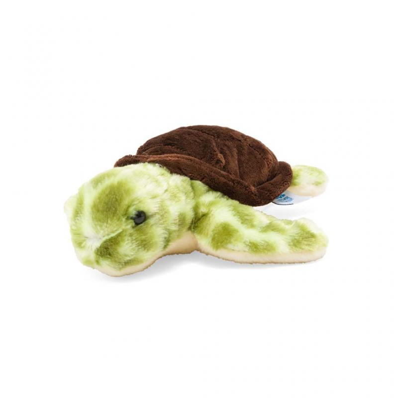 Turtle Soft Toy, 20cm