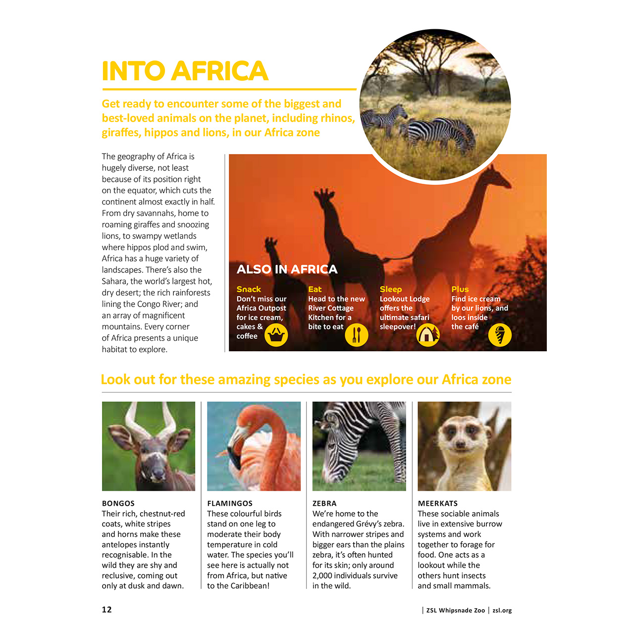Whipsnade Zoo Guidebook Africa Page